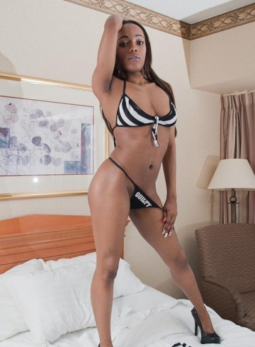 Chicago Escort Mzsweetz Adult Entertainer in United States, Female Adult Service Provider, American Escort and Companion.